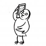 Eule telefoniert - Piktogramm für Nicht Lesende